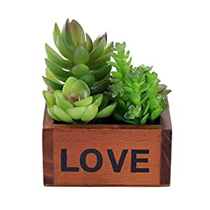 YWXKA 5 Artificial Succulent Potteds, Mini Faux Succulent Plants with Wooden Flower Pots, Ideal for Home, Office and Garden Decor