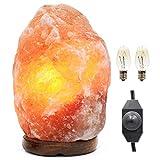 Edison Nation Himalayan Salt Lamp