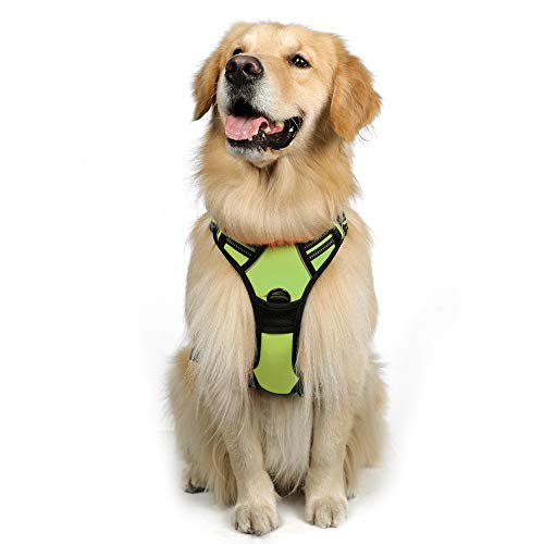 """rabbitgoo Dog Harness, No-Pull Pet Harness with 2 Leash Clips, Adjustable Soft Padded Dog Vest, Reflective No-Choke Pet Oxford Vest Easy Control with Handle for Large Breeds, Green (L, Chest 20.5-36"""")"""