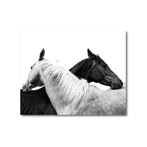 Zhaoyangeng Cartel De La Foto Del Caballo Blanco Y Negro|Animales,Remolque De Caballos,Arte De Pared De Lienzo,Pintura De Cuadros,Decoración De Paredes Para La Habitación Del Hogar: 40X50 Cm S