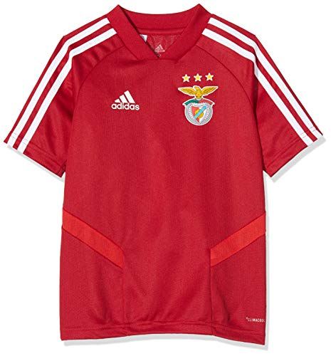 adidas T-Shirt Power Red TRG JSY Y 19/20 (Cl9800) - Camiseta Unisex niños