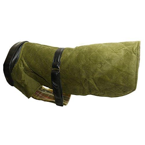 Vital Pet - Manteau en velours côtelé et cuir - Chien (46 cm) (Vert)
