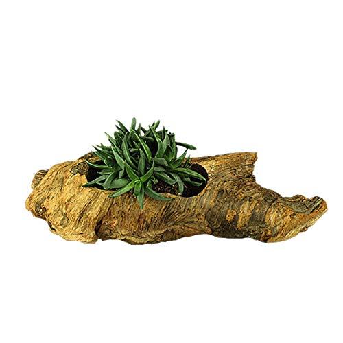 Mini Gartenpflanzen Vase Künstliche Sukkulenten Pflanzen Töpfe Weinlese Hölzerne Baum Wurzel Form Saftige Blumen Topf Topfpflanze Dekoration
