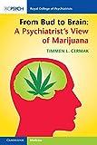 From Bud to Brain: A Psychiatrist's View of Marijuana - Timmen L. Cermak