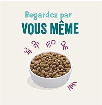 Edgard & Cooper Nourriture Naturelle pour Chatons Croquette sans Cereales Hypoallergénique, Poulet Frais élevé en Plein air, Alimentation Premium Saine complète et équilibrée 1,75 KG