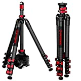 IFOOTAGE Carbon Fiber Travel Tripod, 59' Professional Video Camera Tripods 4 Sections with Centre Pole,Compatible with Canon, Nikon, Sony DSLR Camcorder Video Photography, Max Load 13.2 lbs