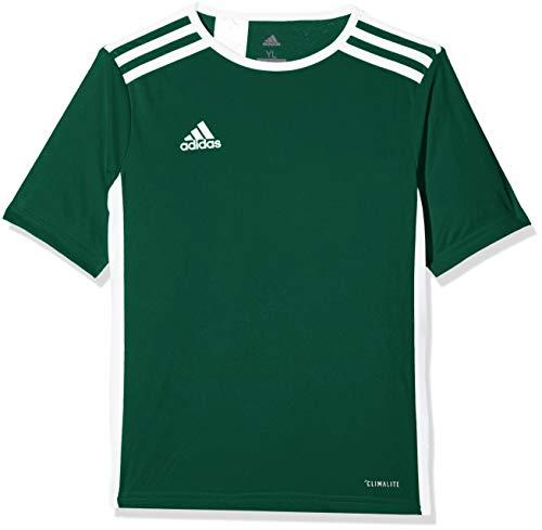 adidas Entrada 18 JSY Teamtrikot - Camiseta Niños