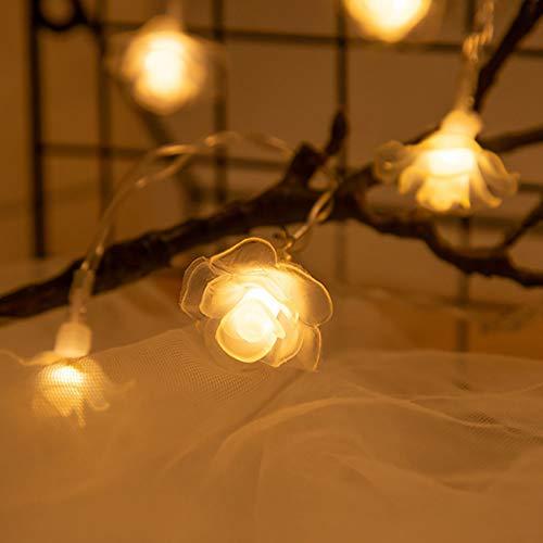 SOIMISS Cadena de luces LED de 6 m, 40 ledes, funciona con pilas, color blanco cálido, atmósfera romántica, decoración para el día de San Valentín, bodas, cumpleaños, interior y exterior (sin batería)