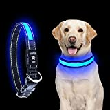 LED Dog Collar, OMERIL Reflective Dog Collar with High Visibility & Safety, 3 Lighting Modes, Adjustable Buckle, USB Rechargeable Light Up Dog Collar for Night Dog Walking - Blue Medium
