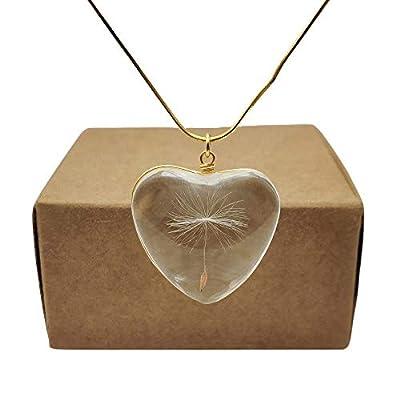 Pissenlit Graine Fait un Souhait Vraie Fleur Gros Cœur Amour Plaqué Or Serpent Chaîne Colliers avec pendentifs