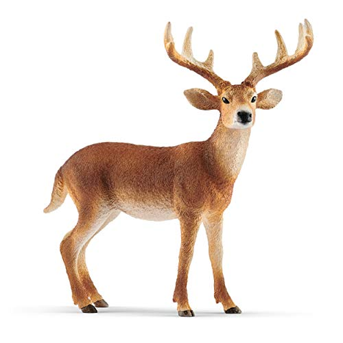 SCHLEICH Wild Life, Animal Figurine, Animal Toys for Boys and Girls 3-8 Years Old, White-Tailed Buck