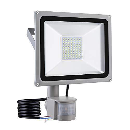 100w induction lamp - 1