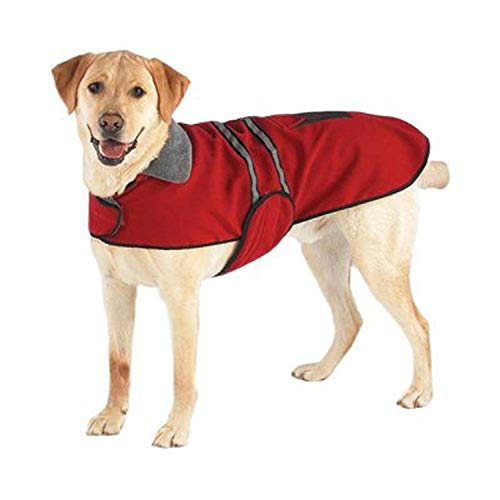 """Casual Canine Reflective Jacket for Dogs, 20"""" Large, Red"""