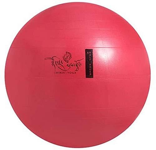 Ralf Bauer Hillfield Gymnastikball Sitzball NINJE Yoga by rot/rosa 65 cm Schwangerschaftsvorbereitung