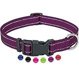 Amazon Brand - Umi - Collar de Perro, Reflectante, Ajustable, Nylon, para Perros pequeños y Grandes, Cachorros y Gatos, en Muchos Colores y Tallas Distintos, Violeta, L