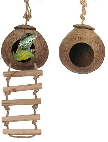 PINVNBY Natürliche Kokosnussschale, Gecko-Nesthaus, Reptilien-Verstecke, Bettkäfig-Spielzeug mit Leiter, Aufhängeschlaufe für Eidechsen, Chamäleon, Gecko, Schlangen, Kleintiere, 2 Stück