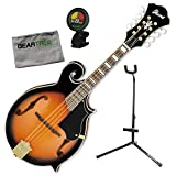 Ibanez M522SBS F-Style Acoustic Brown Sunburst Mandolin Bundle w/Tuner, Stand, C