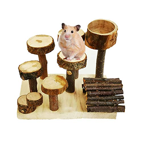 kathson Hamster Wooden Playground Natural Apple Chew Toys Set Platform with Wood Bridge Food Bowl Tunnel Toy for Small Animals Glider Chinchilla Guinea-Pigs