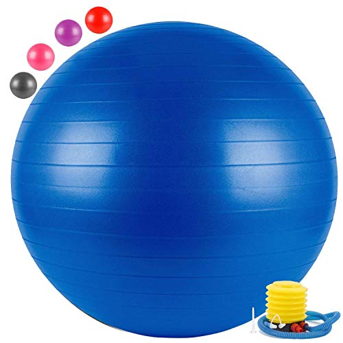 VEE FAB Exercise Gym Ball 65cm with Pump Exercise Equipment for Home, Balance, Gym, Core Strength,...