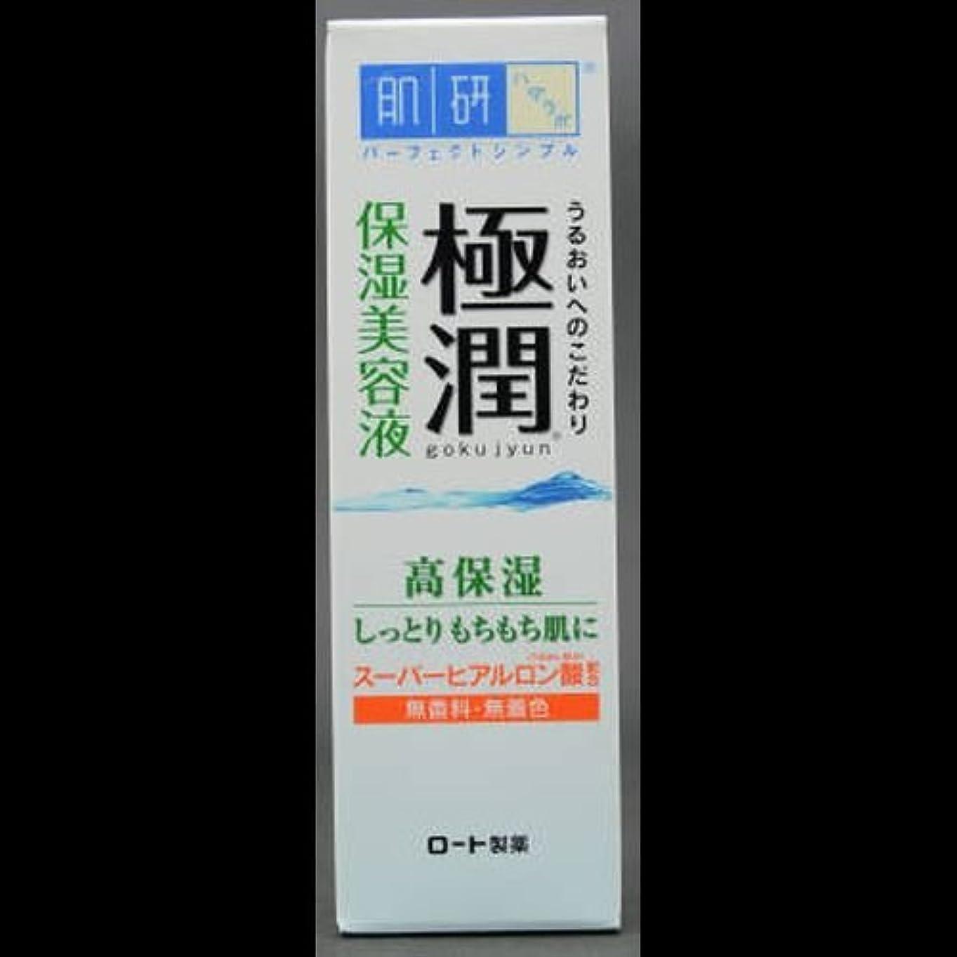 硬化する注文ストライク【まとめ買い】肌研 極潤 ヒアルロン美容液 30g ×2セット