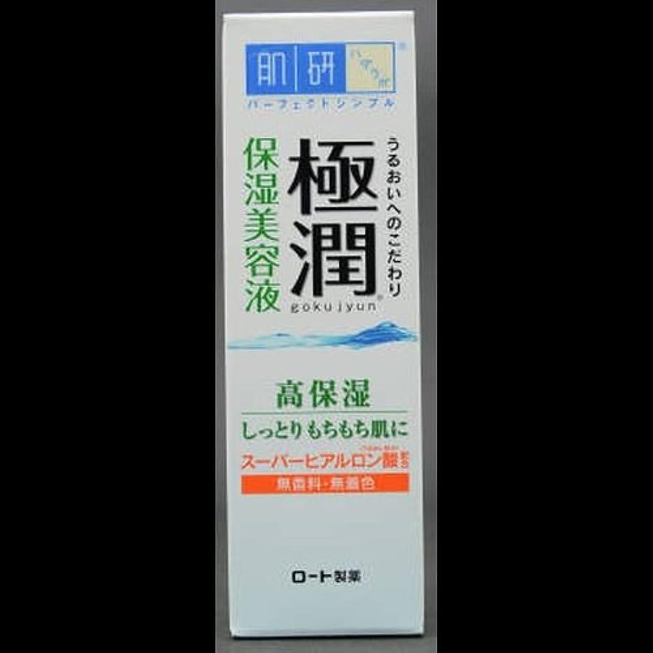 ハブブ税金指【まとめ買い】肌研 極潤 ヒアルロン美容液 30g ×2セット