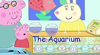 kid aquariums
