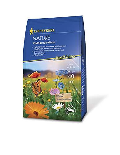 Profi-Line Nature - Wildblumen-Wiese
