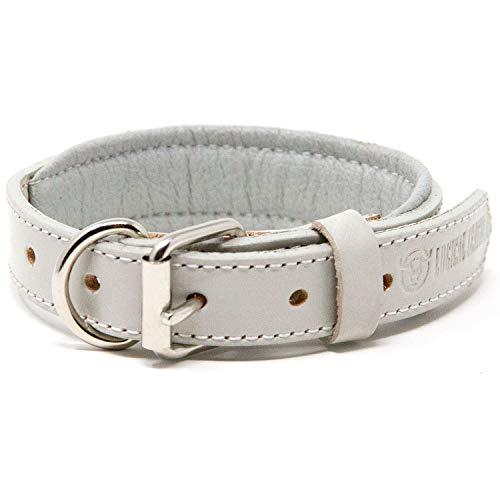 Logical Leather Padded Dog Collar - Best Full Grain Heavy Duty Genuine Leather Collar - Grey - Small