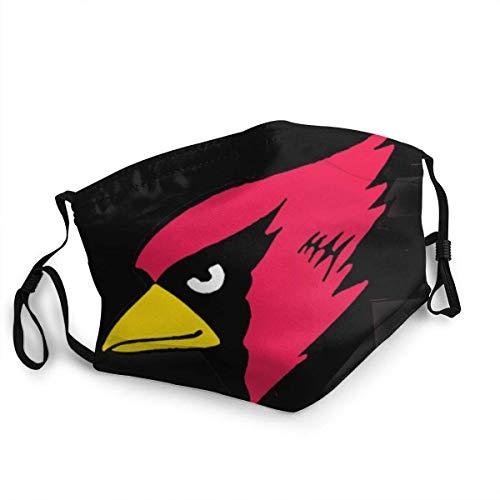 Python Mix Arizona Cardinals Filtered Breathable Face Mundabdeckung Kawaii Gesichts- und Mundabdeckung für Staub im Freien Festivals Sport
