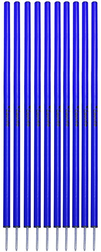 Cawila Slalomstange L 160 cm | blau 10er