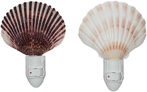 U S Shell Seashell Night Light Set of 2 Irish Deep and Caribbean Pecten product image