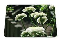 22cmx18cm マウスパッド (除虫菊の花白い庭のクローズアップ) パターンカスタムの マウスパッド