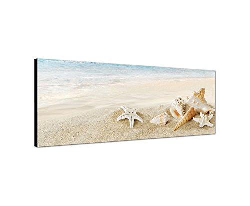 Tela montata su telaio, quadro da parete, motivo panorama (spiaggia bianca) sul mare, con conchiglie, stelle marine e lumache, 120 x 40 cm Qualità di bestforhome.