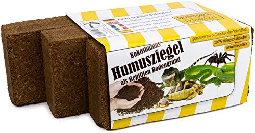 Humusziegel - 3 x 650g sustrato de Coco como Arena para terrarios, Hace 27 L