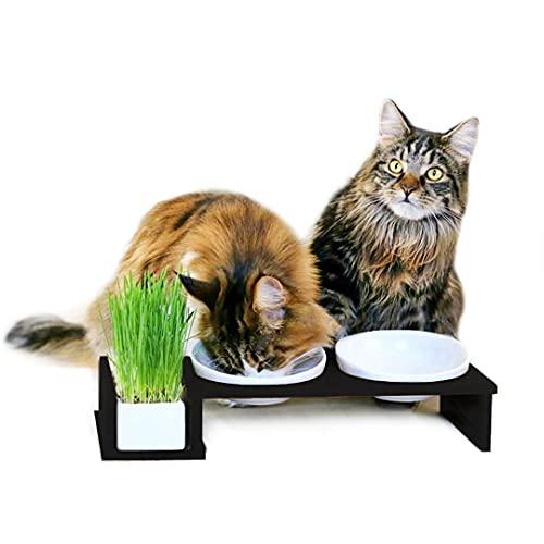 CanadianCat Company ® | Futterbar Cat Diner | Futterstation für Katzen mit Keramiknäpfen und Katzengrasschale