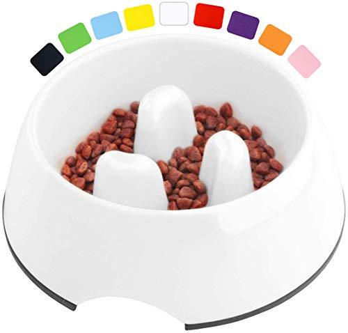 DDOXX Comedero Antivoracidad Perro, Antideslizante   Muchos Colores y Tamaños   para Perros Pequeño, Mediano y Grande   Bol Accesorios Melamina Gato Cachorro   Blanco, 600 ml