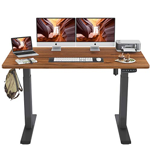 FEZIBO Height Adjustable Electric Standing Desk,...