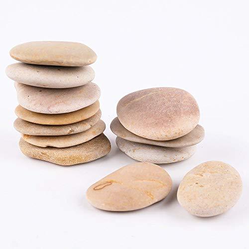 ROCKIMPACT 16 große beige Steine zum bemalen - natürliche Flussfelsen mit glatter Oberfläche für Kunsthandwerk, 5-8 cm