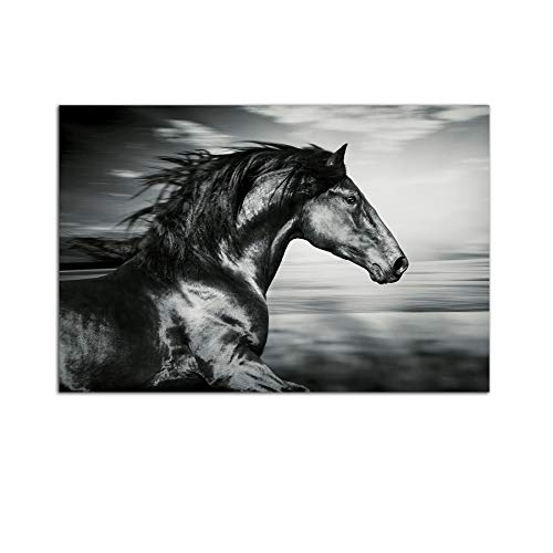 Startonight Cuadro sobre Vidrio - Hermoso Caballo Negro - Moderno Cuadro de Cristal Acrílico 60 x 90 cm