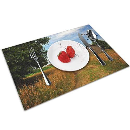 N/A Tafelmatten Placemats set van 4, Wasbare PVC Eetplaats Matten Hittebestendige Keuken Matten Road Huizen Bomen Sky Vogels Landschap Mood Farm Rustiek