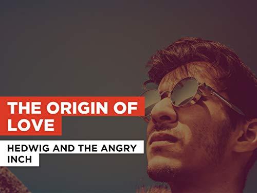 The Origin of Love al estilo de Hedwig And The Angry Inch