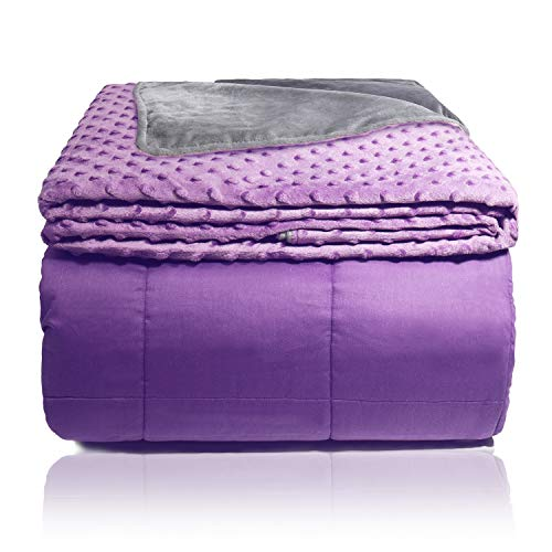 """Aemicion Weighted Blanket 20LB with Cover for Adults, Teens - Full/ Queen Bed - 60""""x80"""" 20LBS"""
