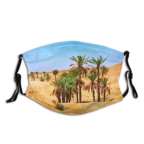 Reusable Mouth Scarf Sahara desert Face Protection Anti Dust Balaclava Washable Sport Bandana with filter