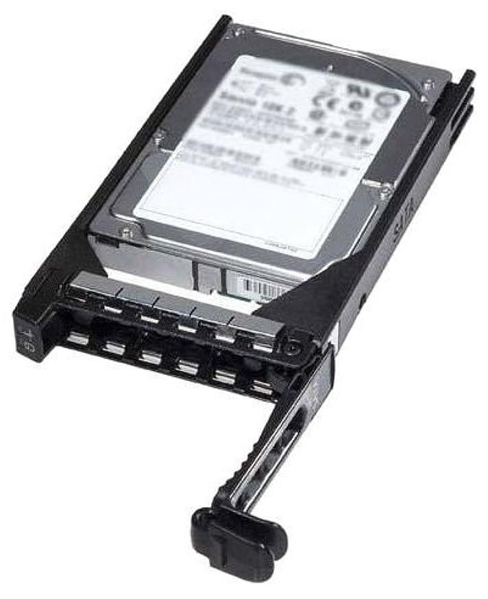 何もない保険をかける注文DELL 400-AEFD - Dell 400-AEFD / W4NCV 1TB 2.5 6Gbps 7.2K RPM SATA HDD キット G176J