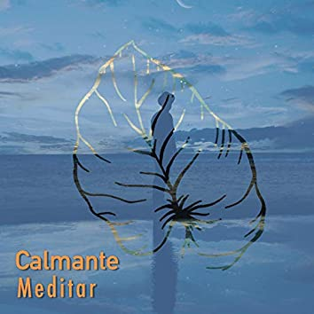 # 1 Album: Calmante Meditar