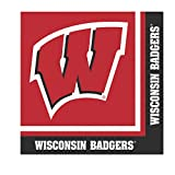 20-Count Paper Lunch Napkins, Wisconsin Badgers