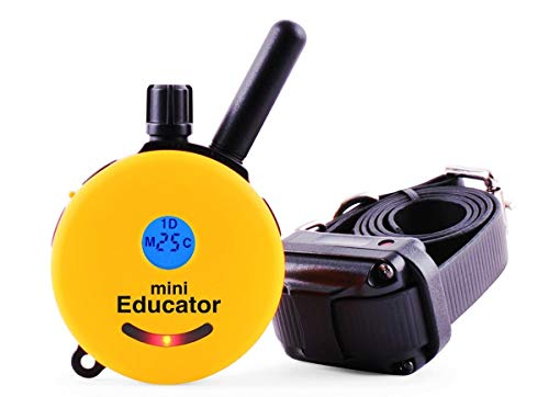 Mini Educator ET-300 Dog Training e Collar - Educator Remote Trainer System - Waterproof - Vibration Tapping Sensation with eOutletDeals Value Bundle