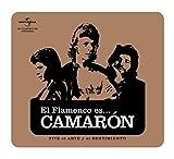 El Flamenco Es…