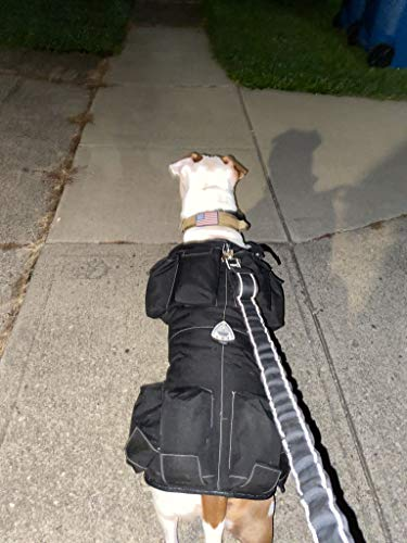 Full Body Weighted Dog Vest Weights On All 4 Legs More Effective Workout Builds Strength and Improves Over All Health. Sandbag Weights Included. (Small Vest: 10 LBS - Dog Size: 20-40 LBS, Black)