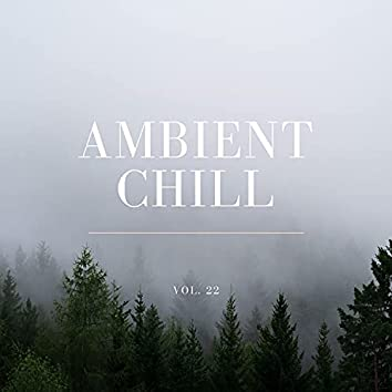 Ambient Chill, Vol. 22